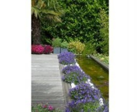 Creation-Amenagement-horizon-jardin-1